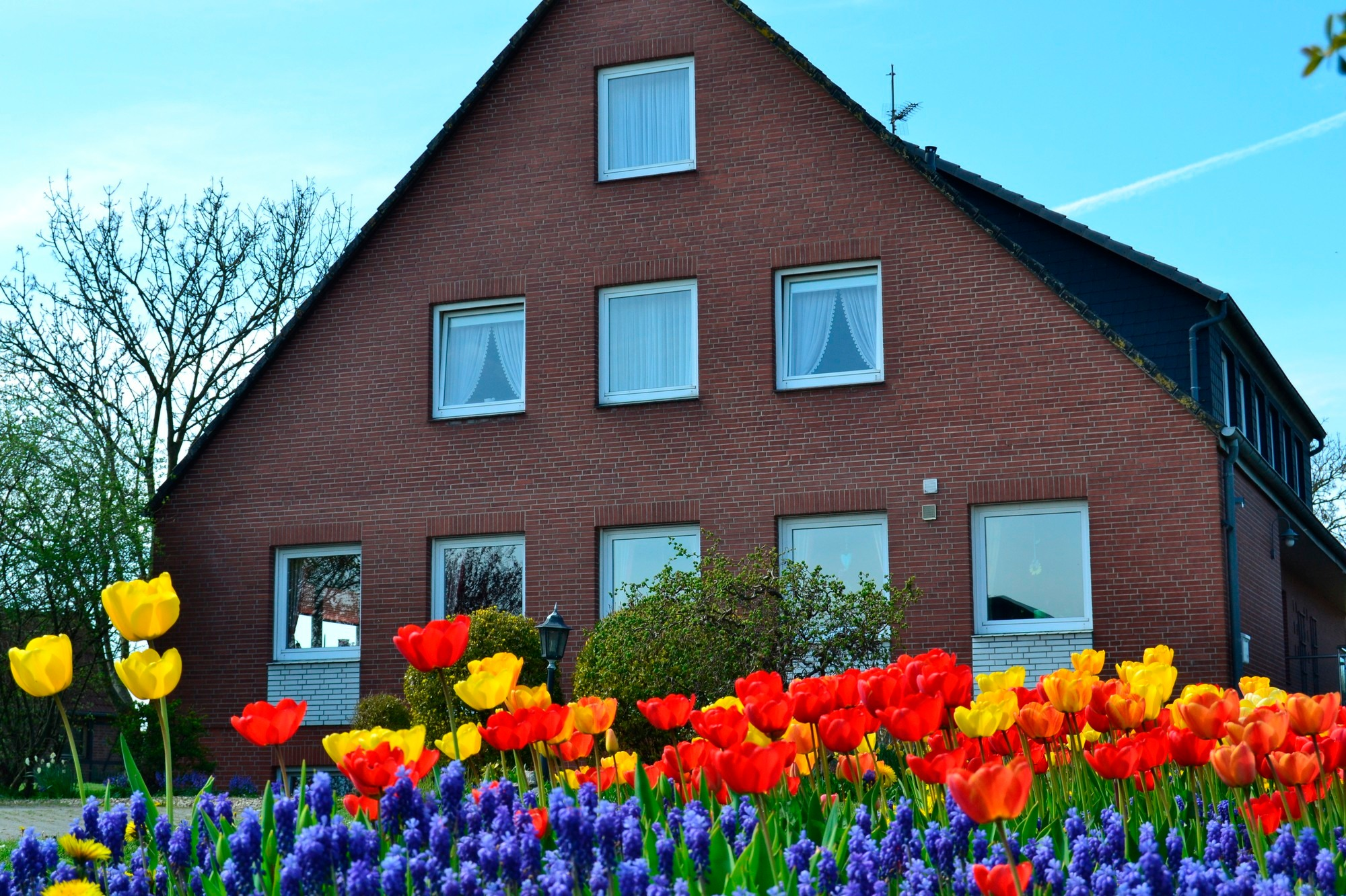 Haus widder nr 3 fehmarn for Billigste haus deutschlands