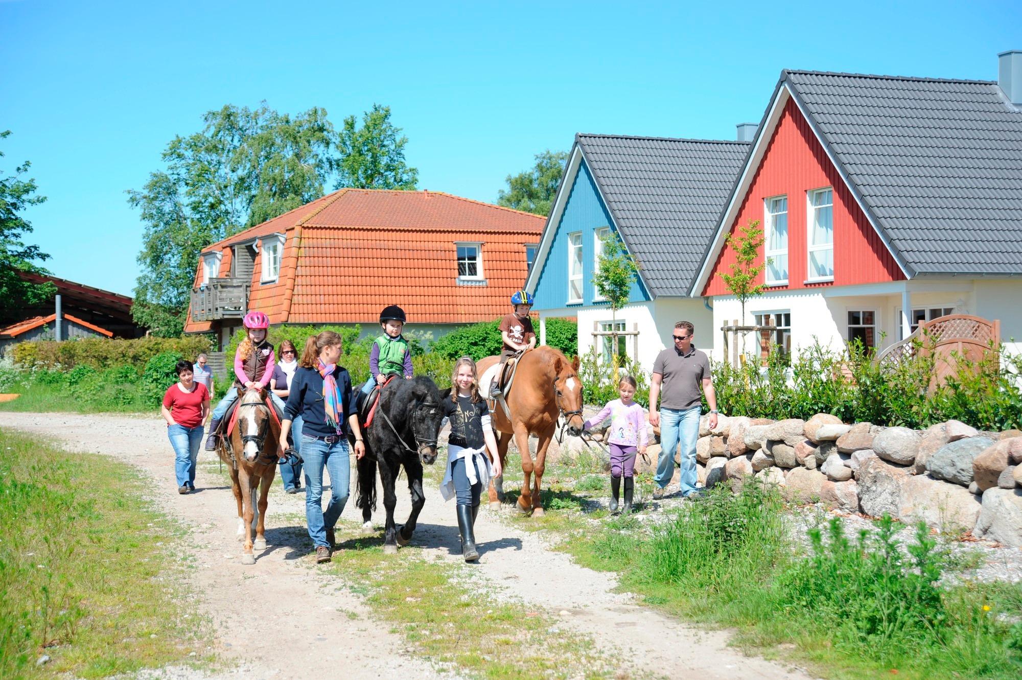 Ferienwohnung Bauernhof Köhlbrandt - Terrassenwohnung (763919), Todendorf, Fehmarn, Schleswig-Holstein, Deutschland, Bild 5