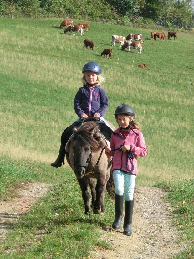 Ferienwohnung Dorfblick (1996112), Horben, Schwarzwald, Baden-Württemberg, Deutschland, Bild 6