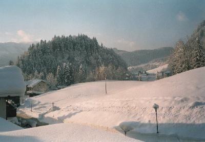 Ferienwohnung Sport Alpin Wohnung 10 (2018965), Oberstdorf, Allgäu (Bayern), Bayern, Deutschland, Bild 11