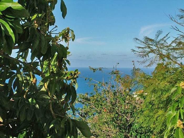 Appartement de vacances mit Meerblick - F0102 (2211492), El Sauzal, Ténérife, Iles Canaries, Espagne, image 15