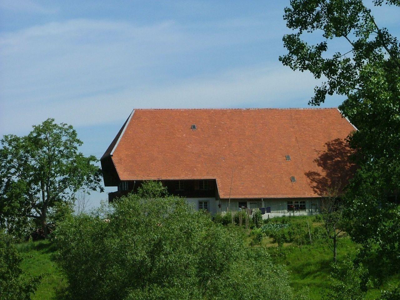 Ferienwohnung Stadtblick (2288340), Horben, Schwarzwald, Baden-Württemberg, Deutschland, Bild 4