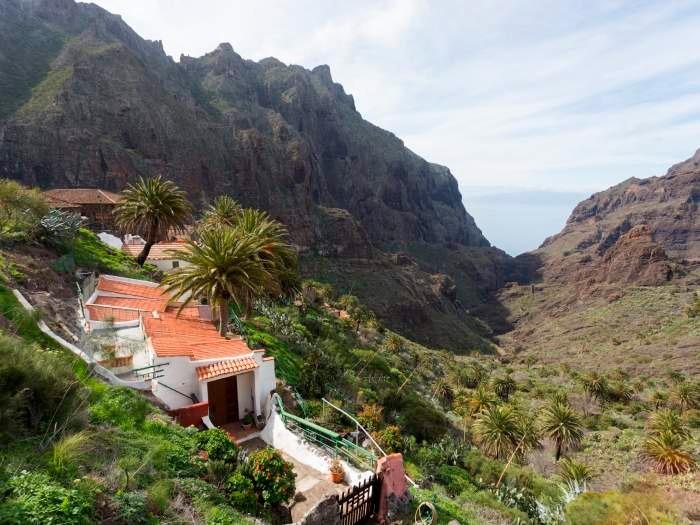 Maison de vacances im Dorf Masca - F7110 (2455925), Masca, Ténérife, Iles Canaries, Espagne, image 20