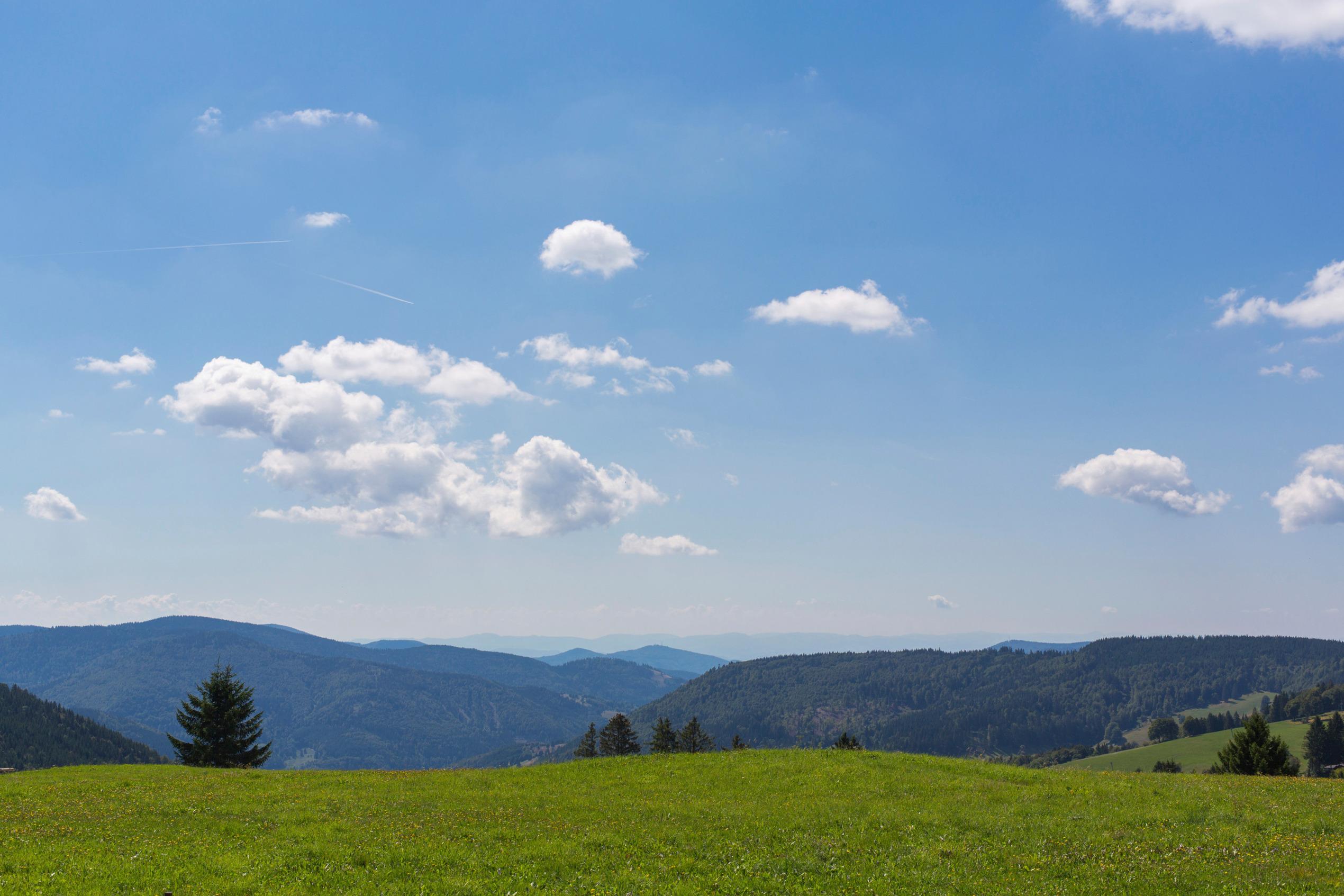 Ferienwohnung Fewo Waldblick- hübsche neu renovierte Fewo- Schwarzwald - Todtnau, Liftverbund Feldberg (2641721), Herrenschwand, Schwarzwald, Baden-Württemberg, Deutschland, Bild 12