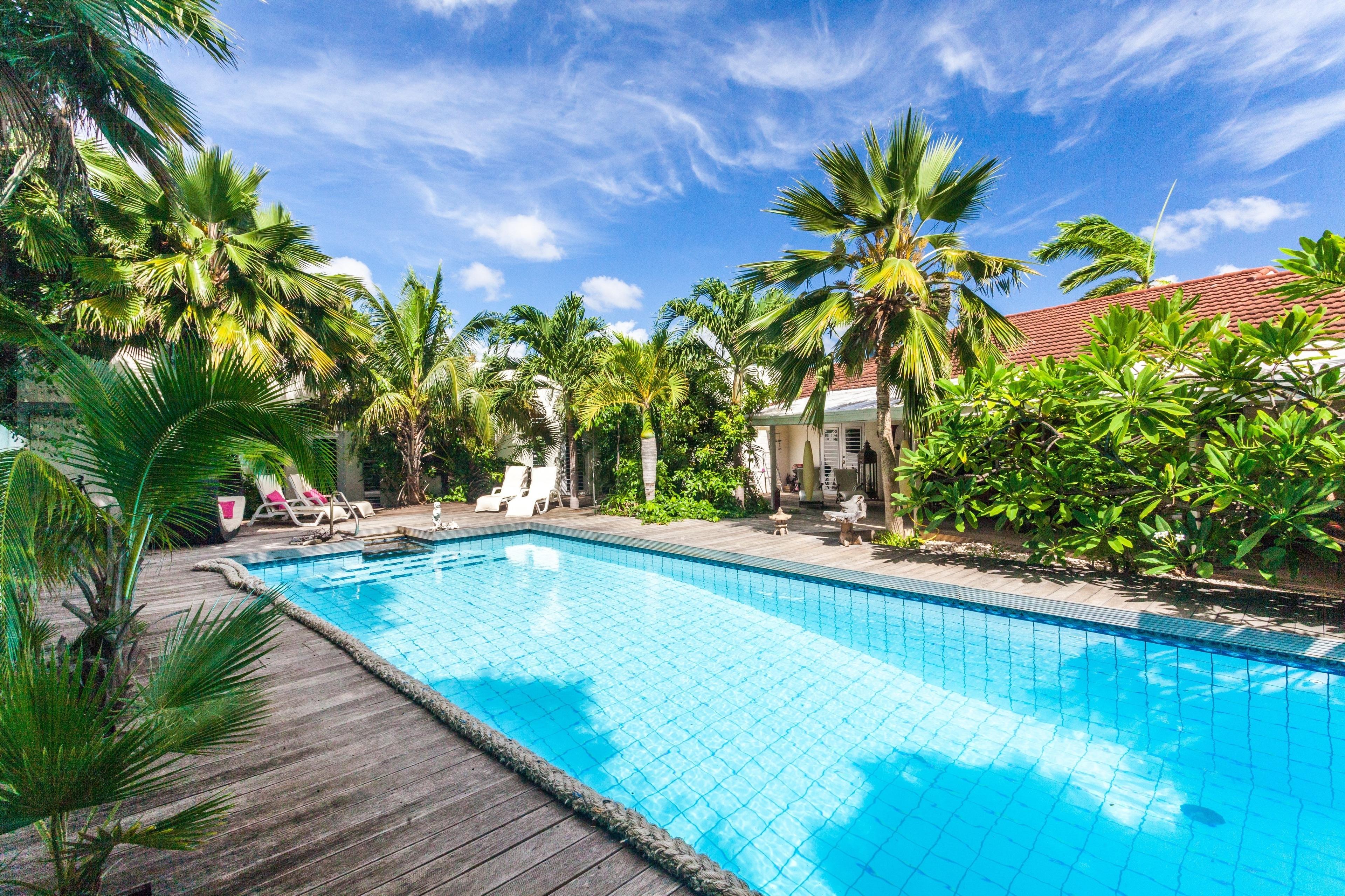 Coconut Ferienwohnung in Mittelamerika und Karibik