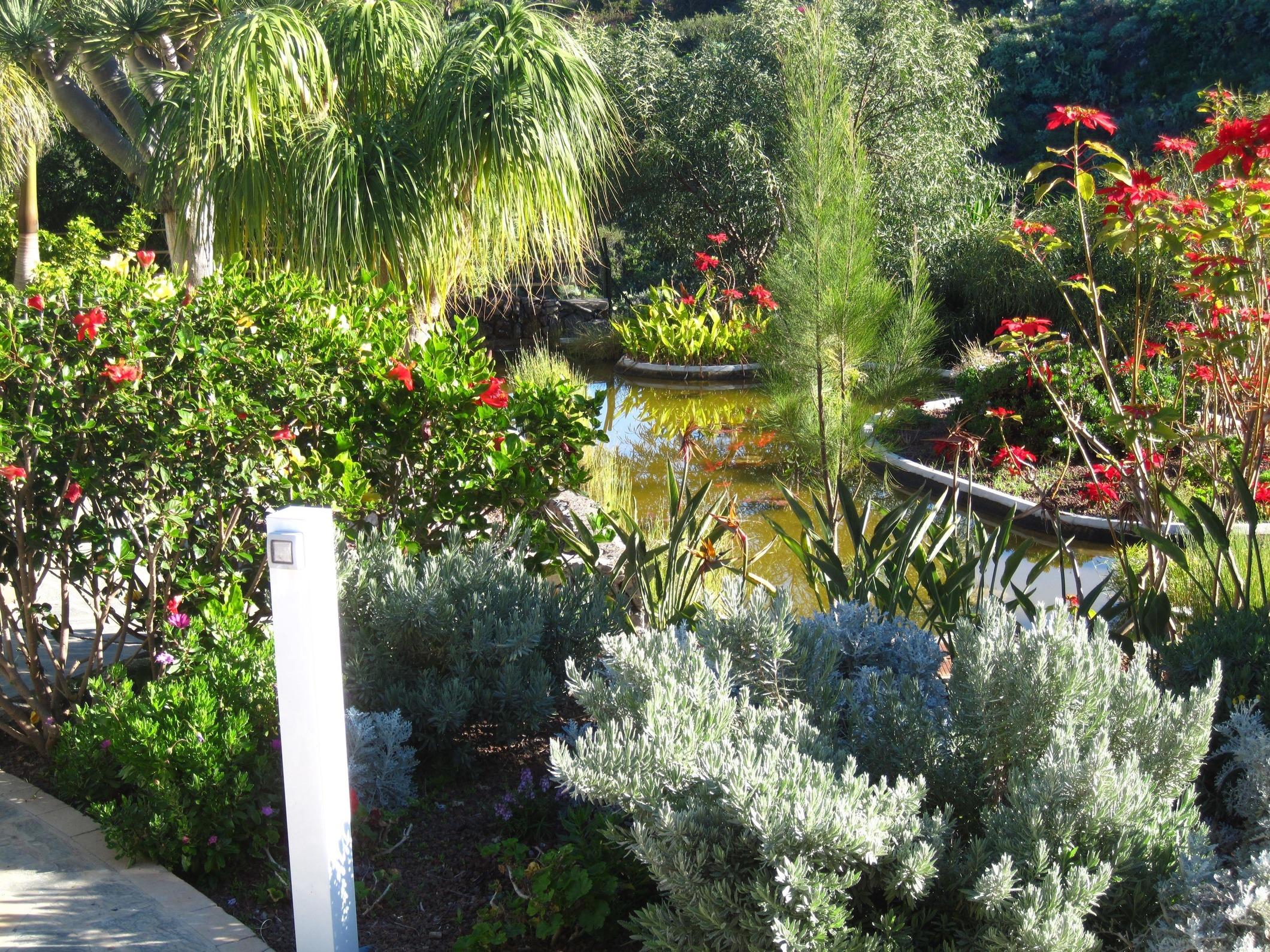 Appartement de vacances Fewo Atico Florasol, sehr ruhig direkt am Naturschutzgebiet, mit Pool, 2 Terrassen, Grill, (2492983), Santa Ursula, Ténérife, Iles Canaries, Espagne, image 23