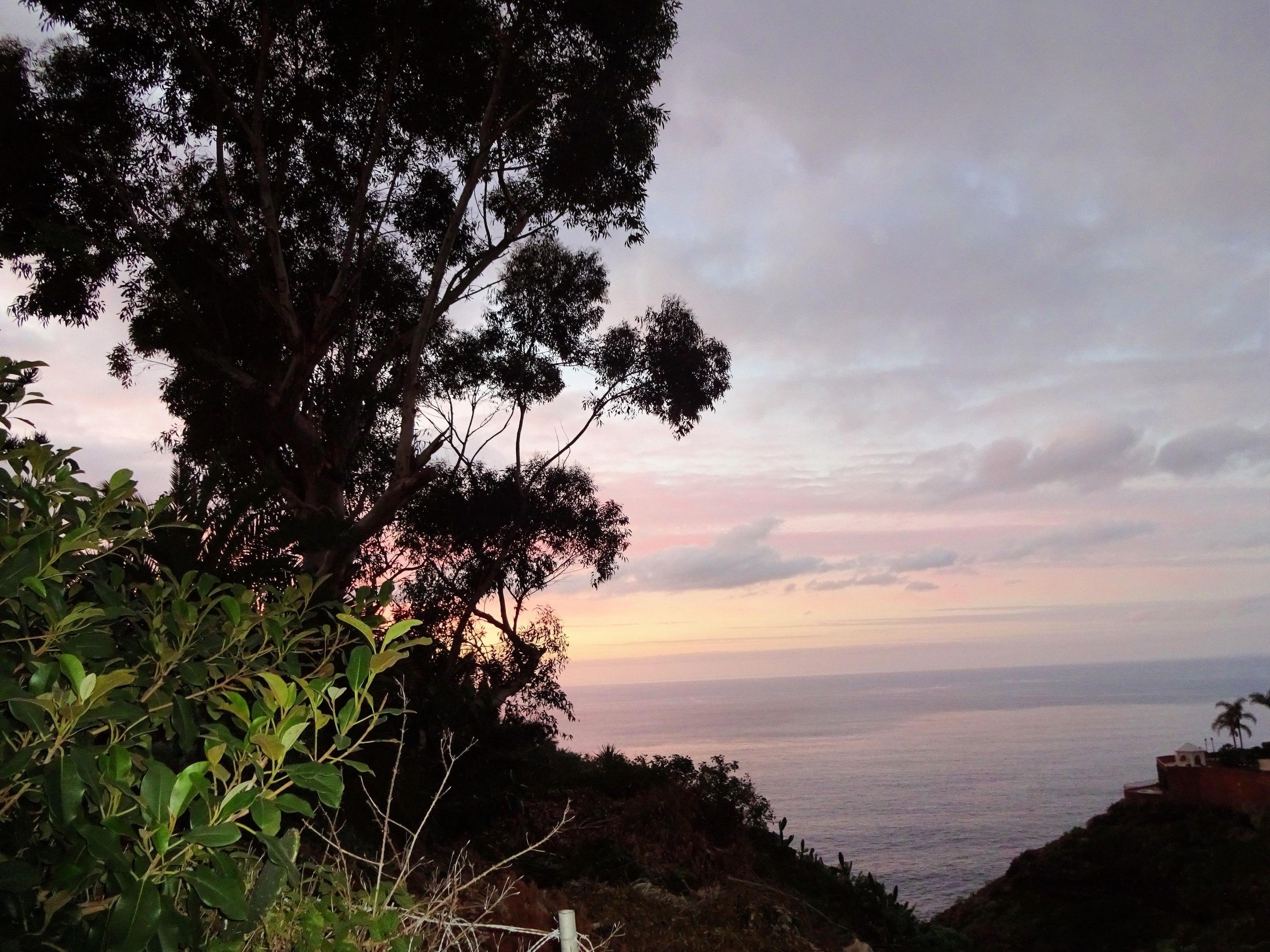 Appartement de vacances Fewo Rocamar, auf dem Felsen über dem Meer mit toller Sicht, 2 Terrassen, Pool, Grill und  (2492985), Santa Ursula, Ténérife, Iles Canaries, Espagne, image 17