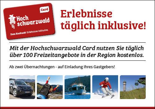 Ferienwohnung Fewo 20 - Residenz Schauinsland- mit SchwimmbadTodtnauberg bei Feldberg (2641795), Todtnau, Schwarzwald, Baden-Württemberg, Deutschland, Bild 12