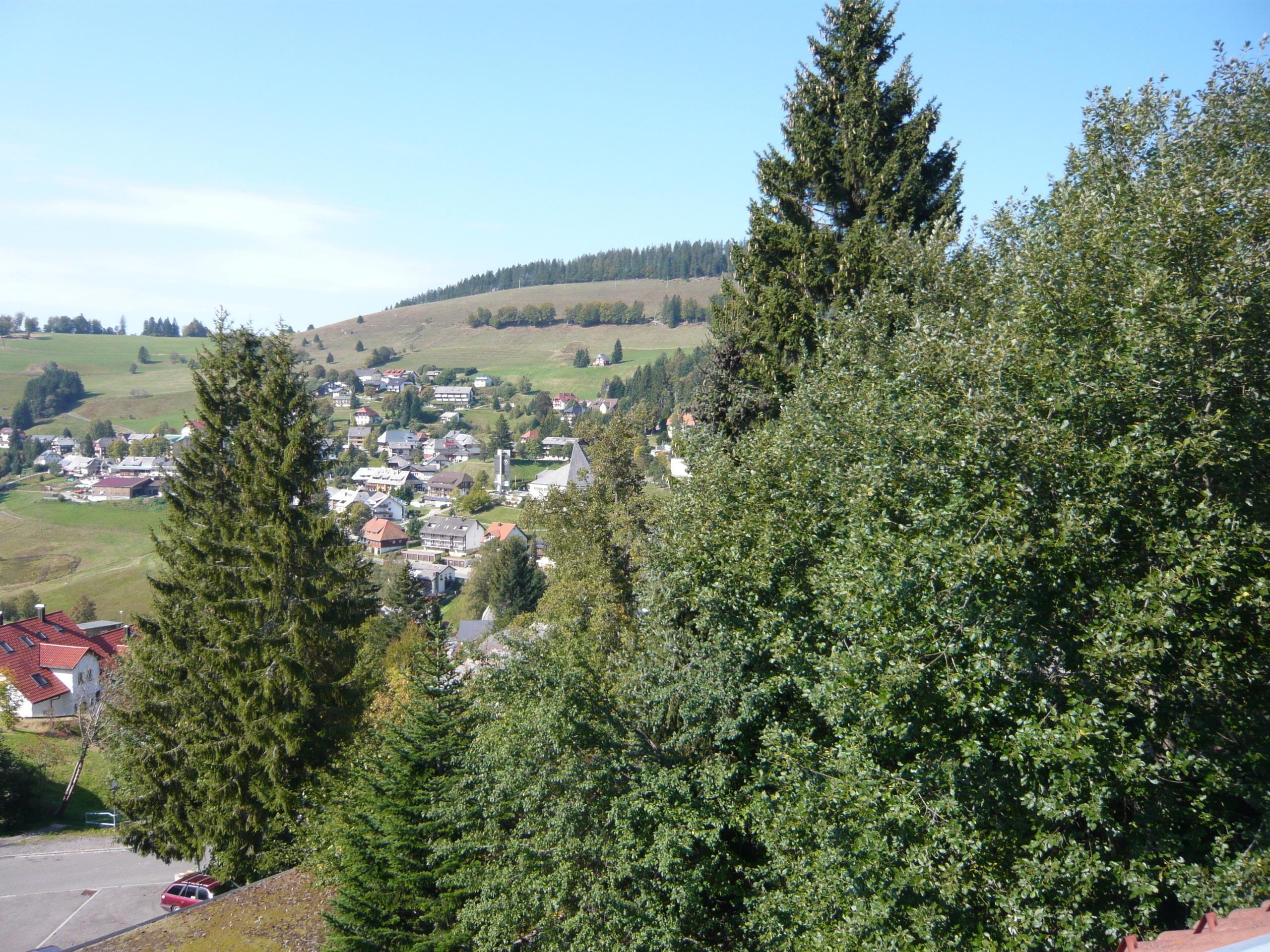 Ferienwohnung Fewo 20 - Residenz Schauinsland- mit SchwimmbadTodtnauberg bei Feldberg (2641795), Todtnau, Schwarzwald, Baden-Württemberg, Deutschland, Bild 10