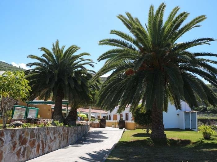 Ferienwohnung Ruhiges Apartment in San Juan - F0222 (2548013), San Juan de la Rambla, Teneriffa, Kanarische Inseln, Spanien, Bild 11