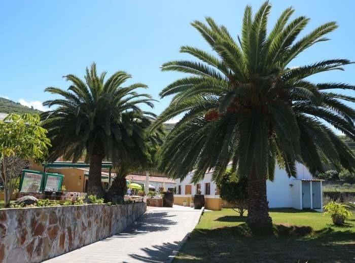 Ferienwohnung Wohnung im nördlichen San Juan - F0224 (2548015), San Juan de la Rambla, Teneriffa, Kanarische Inseln, Spanien, Bild 23