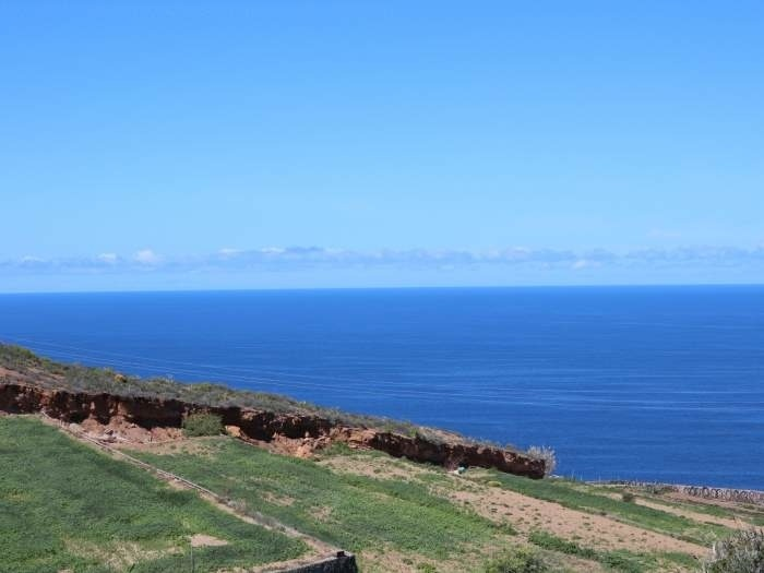 Ferienhaus Häuschen mit Terrasse - F7565 (2561878), San Juan de la Rambla, Teneriffa, Kanarische Inseln, Spanien, Bild 14