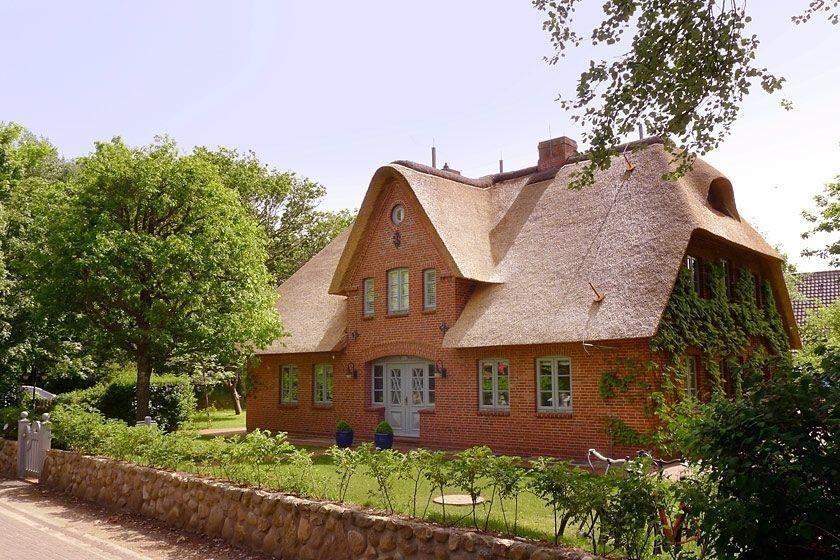 Haus Farnwai Nestfarn