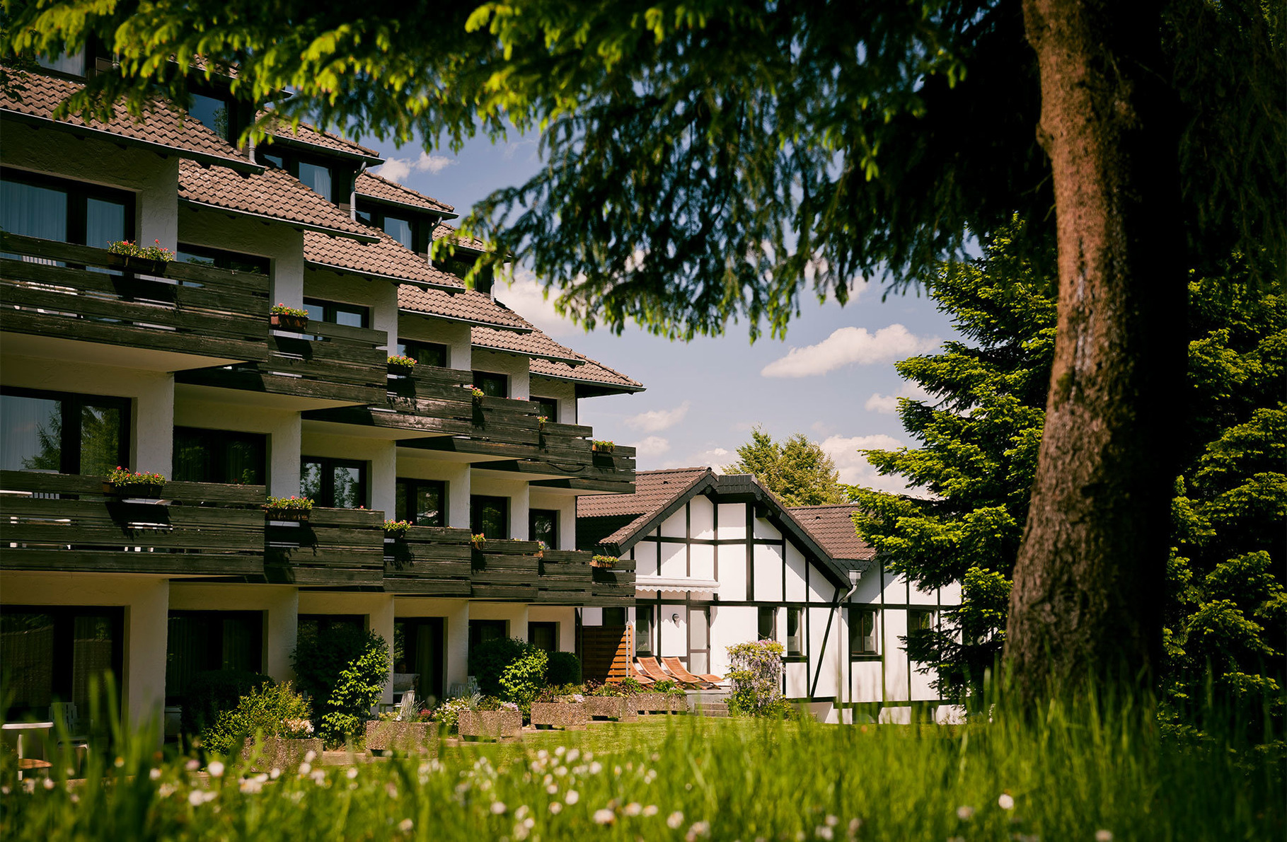 """Ferienwohnung """"Erle"""" 5 Ferienwohnung  Eifel Rheinland Pfalz"""